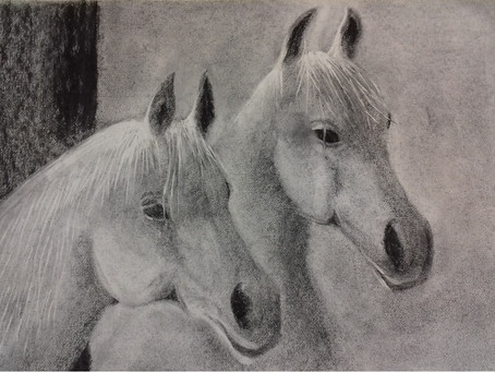 Two horses - a charcoal drawing by Christopher Baumann