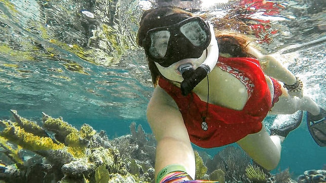 Snorkelling the Belize Barrier Reef