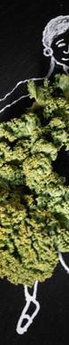 Broccoliballkleid