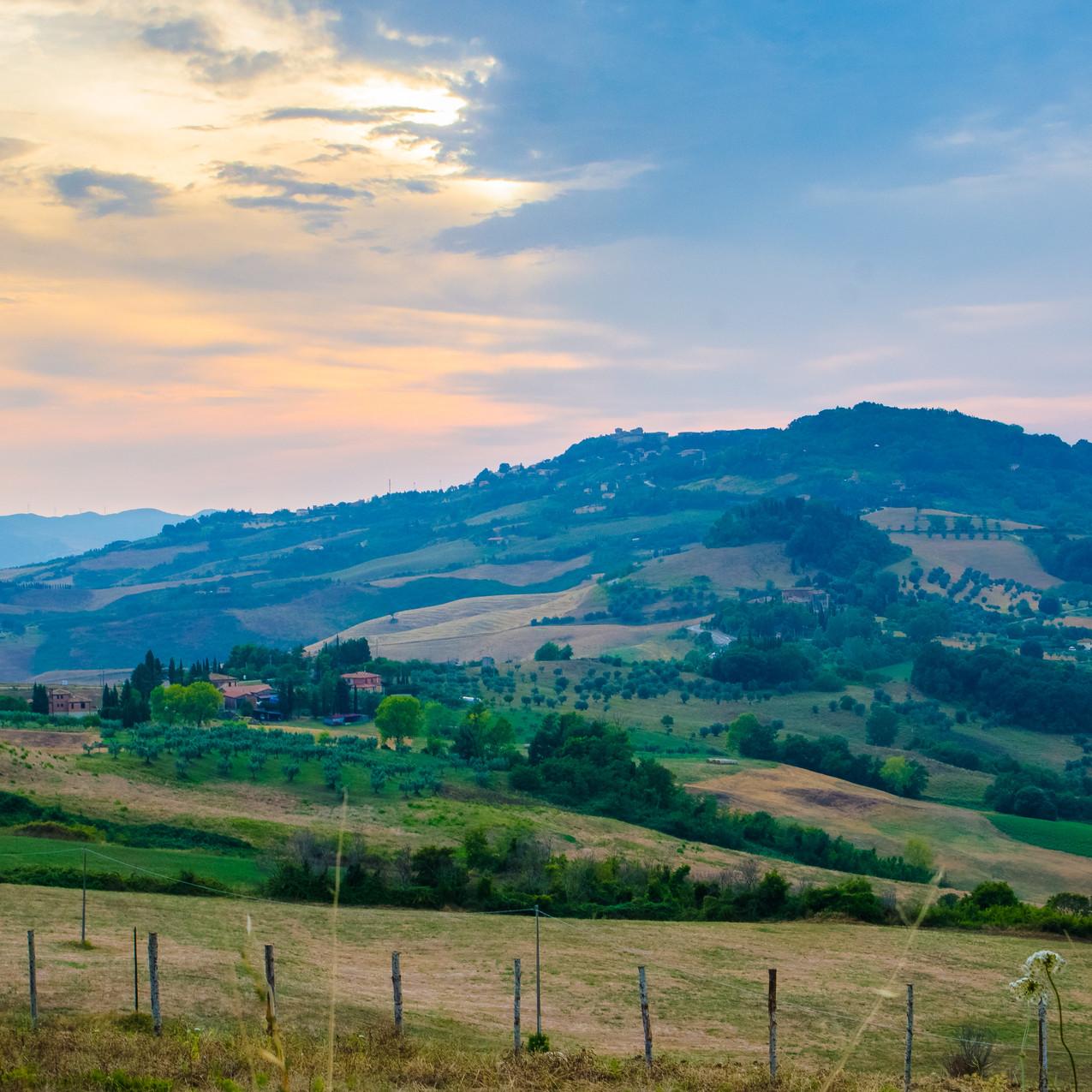 Montegemoli Pomarance. July-August 2018.