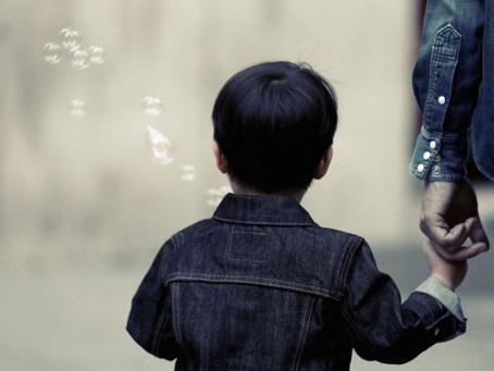 Guarda, convivência e alienação parental - novas teses