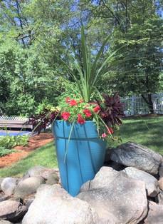 Pots Summer Beri.2.jpg