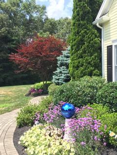 Landscape Color and Texture