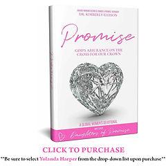promise-book-v2.jpg