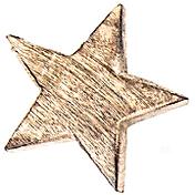 DE_Gold Star.png