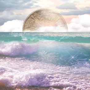 ♓︎ New Moon in Pisces ♓︎