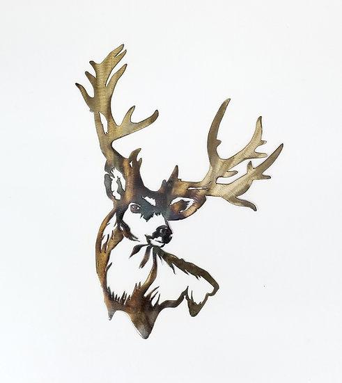 Buck Head Shot