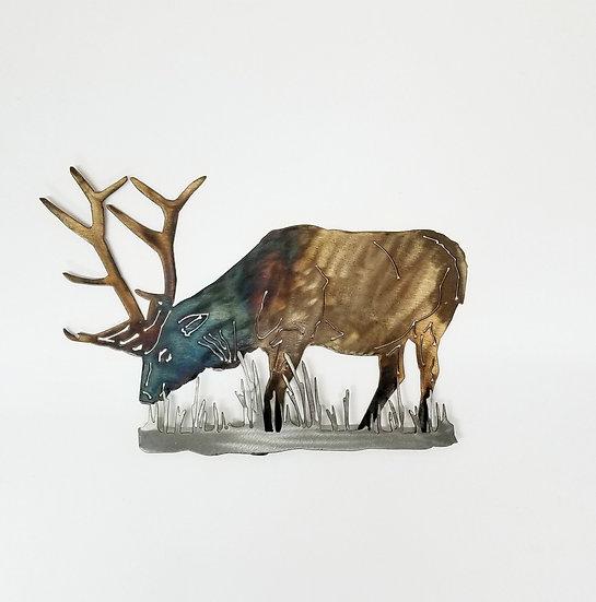 Bull Elk with 3D Brush