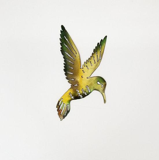Solo Hummingbird