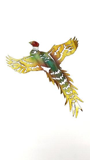 Solo Pheasant