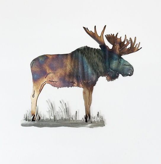 Bull Moose with 3D Brush