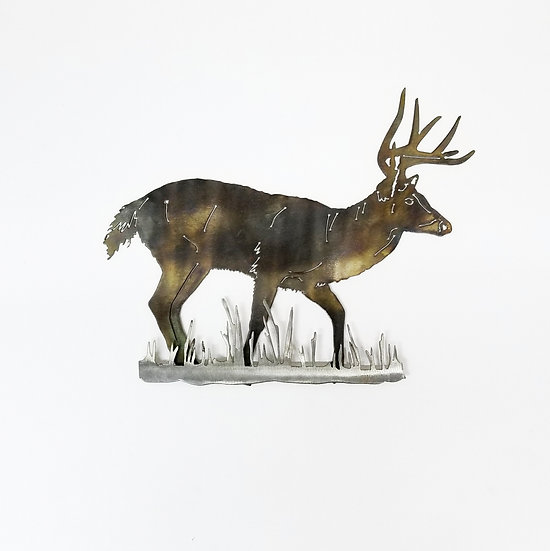 Whitetail Buck with 3D Brush
