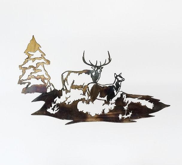 Bull & Cow Elk in the Meadow
