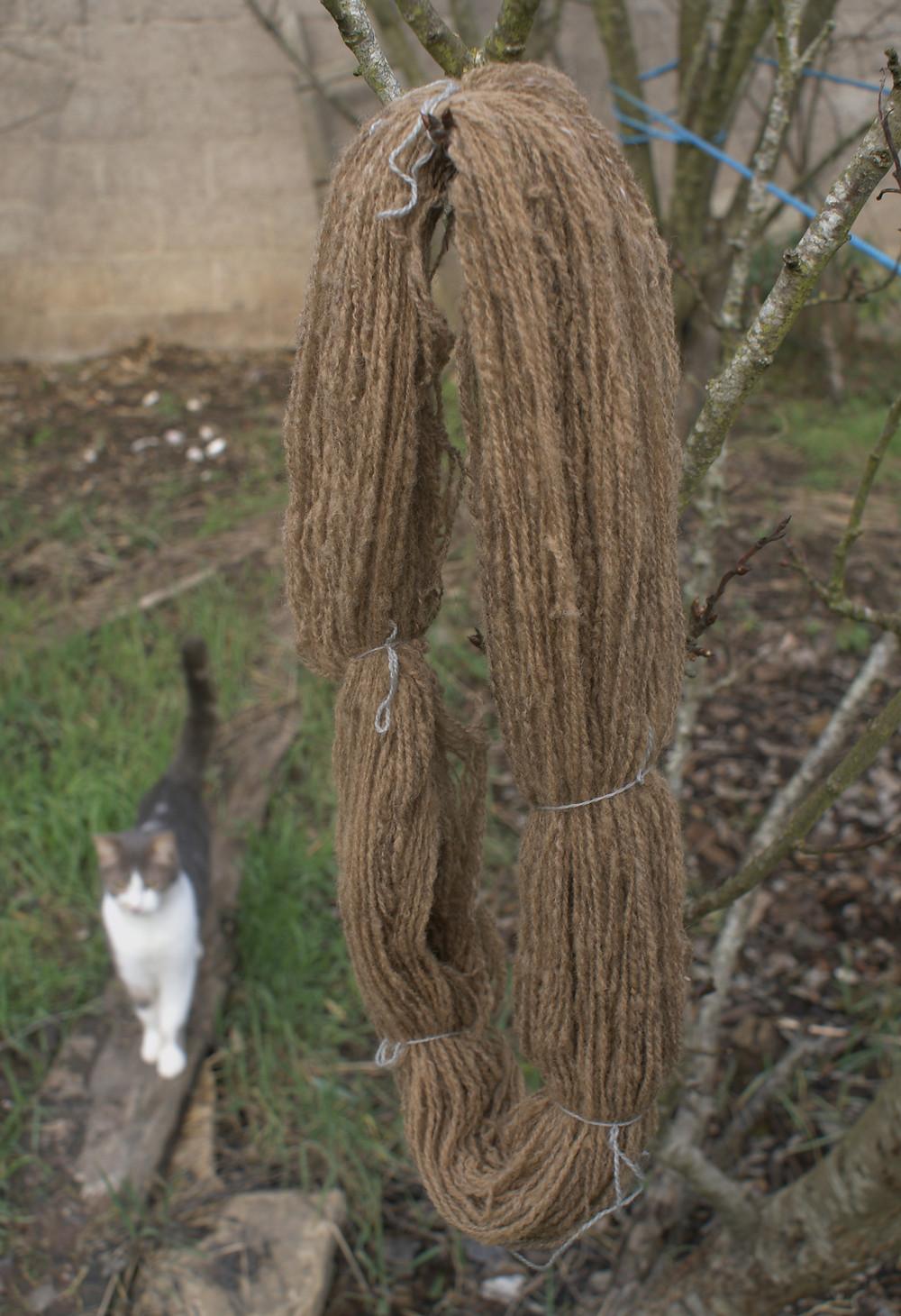 écheveau de laine ile de france teinté en marron mélisse