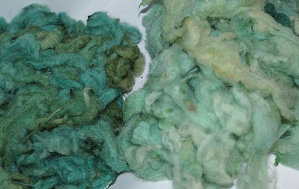 1er et 2eme bain teinture bleue alimentaire sur laine de pays
