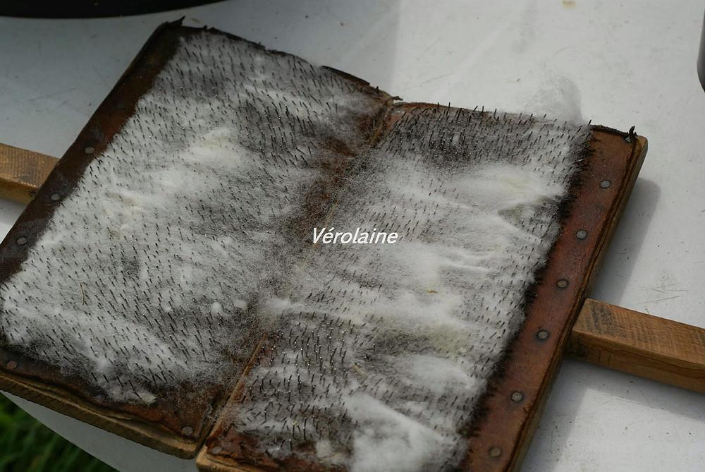 Cardes a laine en train de carder de la laine