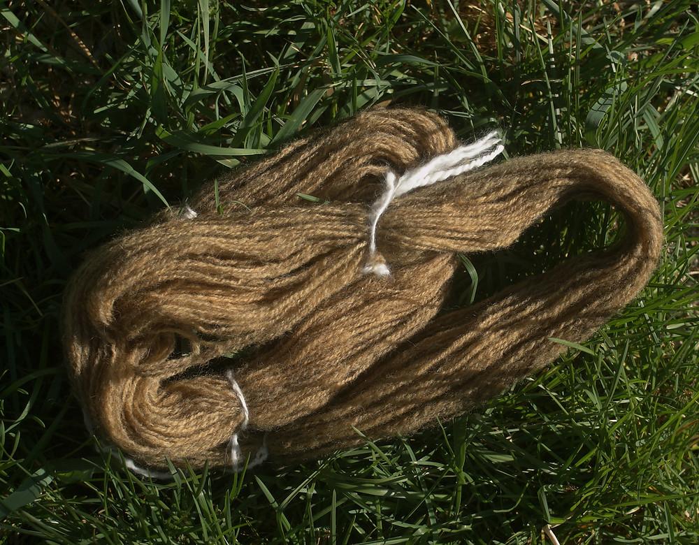 laine  alpaga marron laine teintée pelures oignons