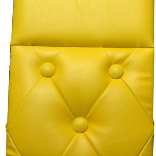 Yellow - Daycab Company.jpg