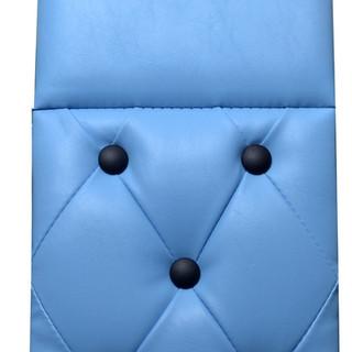Baby Blue & Black - Daycab Company.jpg