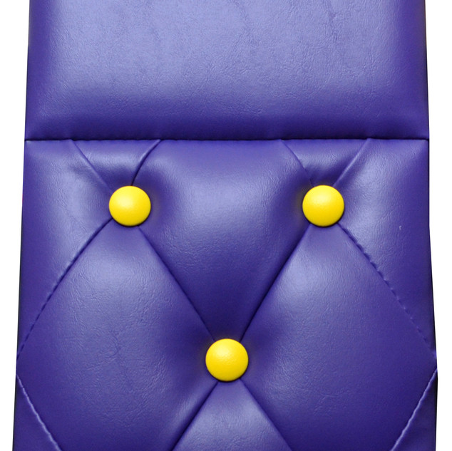 Purple & Yellow - Daycab Company.jpg