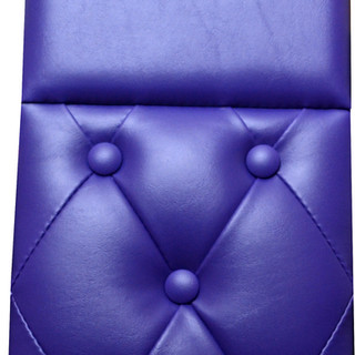Purple - Daycab Company.jpg