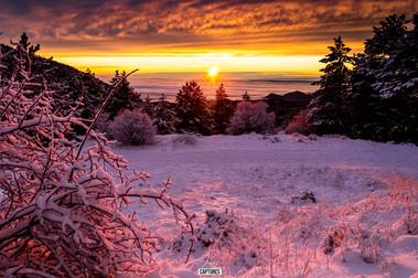 Mt Ventoux-3-1.jpg