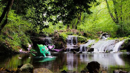 Bubizarre Pokemon Digital Art Painting Photoshop Photographie