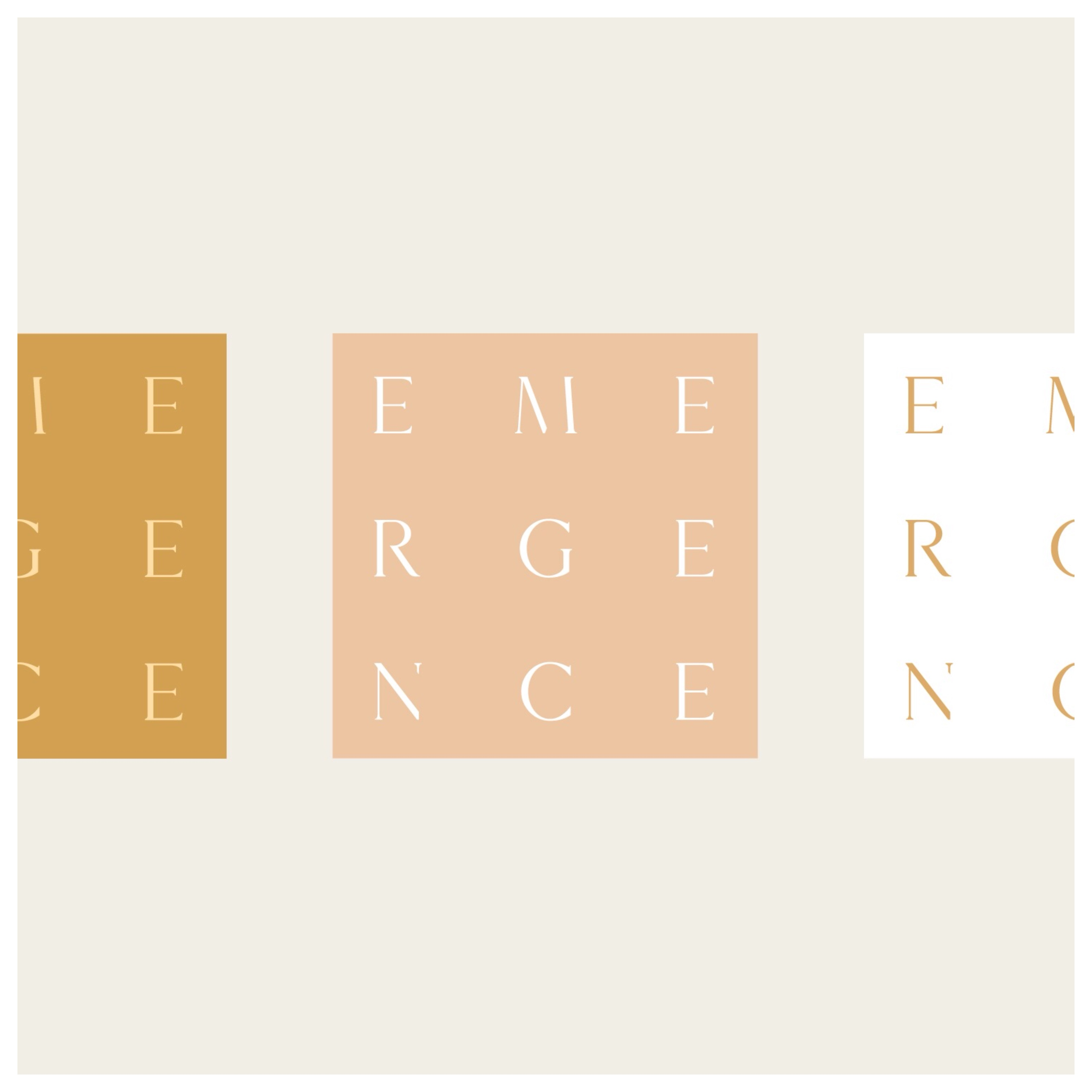 Emergence Consulting Outtake