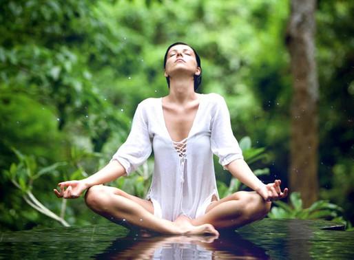 Ouverture de votre centre Wellness Evolution