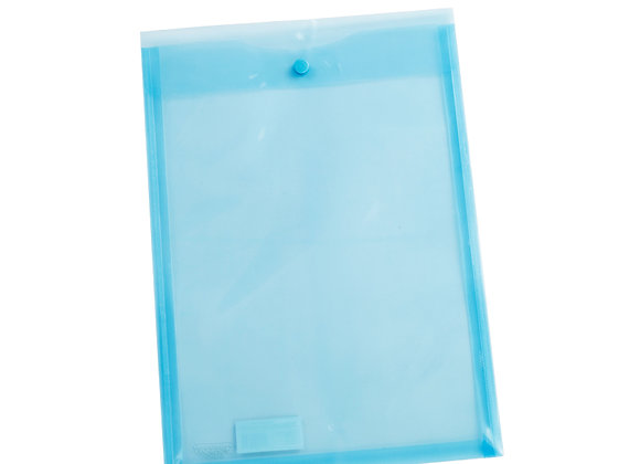 My Clear Bag (v)