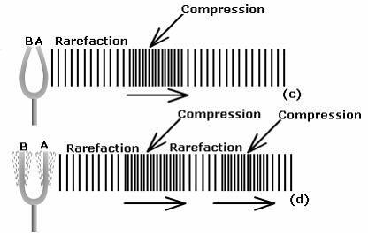 Compression & Rarefaction