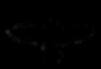 Raven-Logo-300x205.png