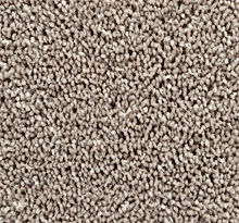 beige carpet.jpg