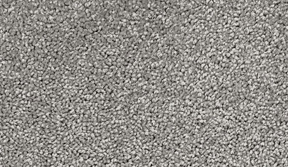 Grey Carpet.jpg