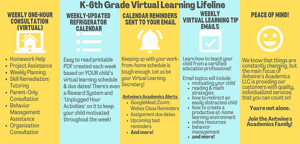 Virtual Learning Lifeline Picture.png