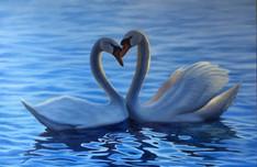 SOLD - Love Birds