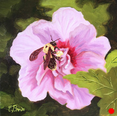 Sold - Hollyhock Bumblebee