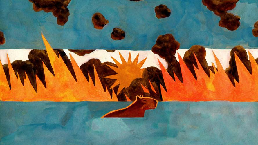 Argentina Wildfires