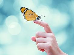 Beautiful%20butterfly%20sitting%20on%20t