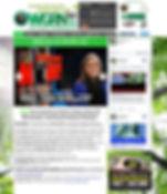 WGRNwebpage.JPG