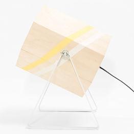 Spotlight-Large-studio-hamerhaai-0222-sc