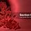 Thumbnail: Blood Donation PPT Templates
