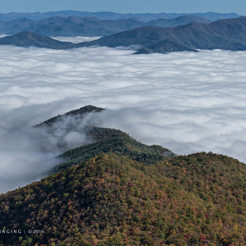 Valley Fog from Pickens Nose Trail