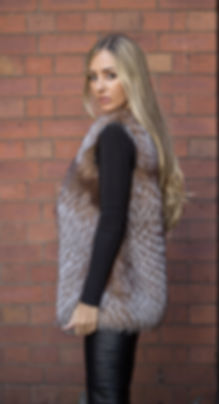Crystal Fox Gilet