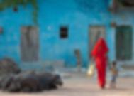 India2019_59A1869.jpg