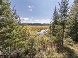 creek property