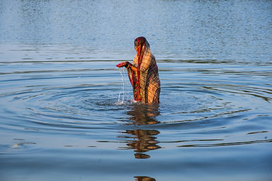 Traditionally dressed Indian woman pray