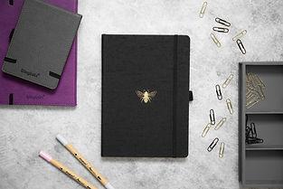 Dingbats_ Pro B5 dotted notebook - bullet journal India 11.jpg