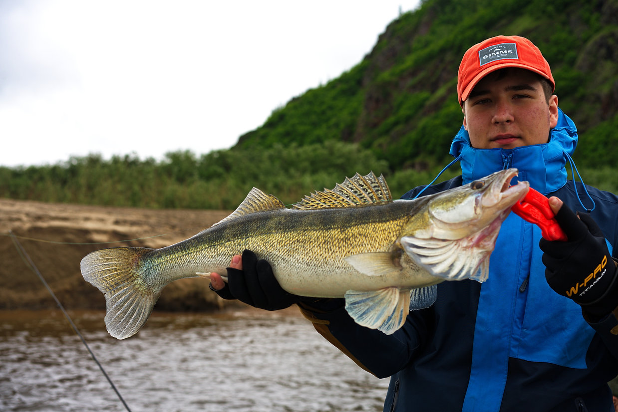 река Амур Судак 4.2.jpg