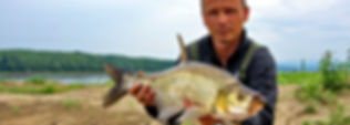 大量的异国情调的捕捞奖杯,其中有许多是找到别的地方世界! 我们提供的钓鱼者一个独